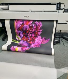 Fine Art Printing Specialist ; A Tribute to Flowers ; Hahnemuhle Natural Line